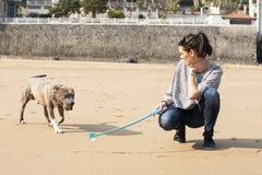 Mujer que juega y que entrena de su perro. foto de archivo