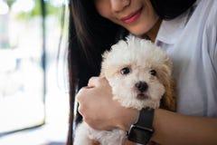 Mujer que lleva a cabo el dogt adorable adolescente femenino con el animal doméstico en casa P Imagen de archivo