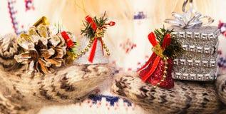 Mujer que lleva el suéter de punto y guantes que sostienen el regalo de la Navidad Imagen de archivo libre de regalías