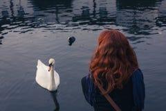 Mujer que mira el cisne Imágenes de archivo libres de regalías