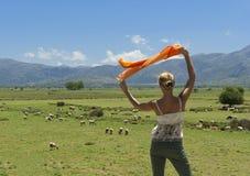 Mujer que mira la multitud de sheeps en prado verde Fotos de archivo