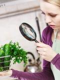 Mujer que mira a través de la lupa la cesta de las verduras Foto de archivo
