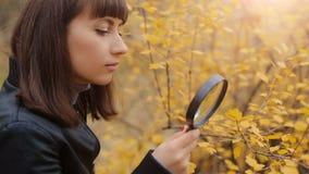 Mujer que mira a través de una lupa en las hojas almacen de metraje de vídeo