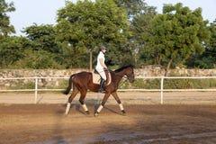 Mujer que monta su caballo Imágenes de archivo libres de regalías