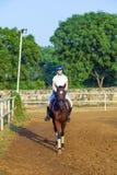Mujer que monta su caballo Imagenes de archivo