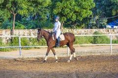 Mujer que monta su caballo Fotos de archivo