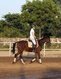 Mujer que monta su caballo Foto de archivo libre de regalías