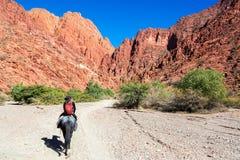 Mujer que monta un caballo Imagen de archivo