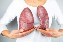 Mujer que muestra dos pulmones delante del pecho Imagenes de archivo