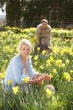 Mujer que oculta los huevos de Pascua adornados Foto de archivo