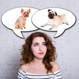Mujer que piensa en perros - perro del barro amasado o terrier de Yorkshire Fotos de archivo