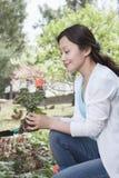 Mujer que planta las flores. Fotografía de archivo