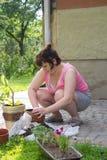 Mujer que planta las flores Fotos de archivo libres de regalías