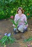 Mujer que planta las flores en jardín Fotografía de archivo