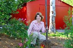 Mujer que planta las flores en jardín Foto de archivo