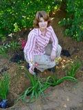 Mujer que planta las flores en jardín Imagen de archivo libre de regalías