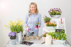 Mujer que planta las flores en pequeños potes Fotografía de archivo