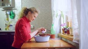 Mujer que planta las semillas en un pote metrajes