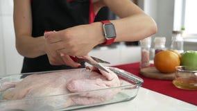 Mujer que prepara el pato relleno para la cena de la Navidad almacen de video