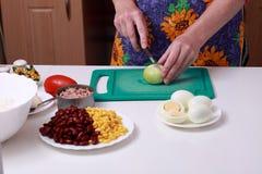 Mujer que prepara la cebolla en la cocina Fotografía de archivo