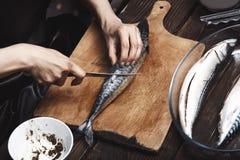 Mujer que prepara pescados de la caballa Imagen de archivo