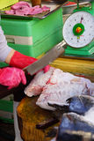 Mujer que prepara pescados en Saigon Imagen de archivo
