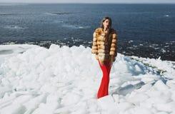 Mujer que presenta en invierno Foto de archivo libre de regalías