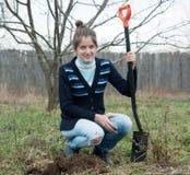 Mujer que reajusta los brotes del arbusto Imagen de archivo