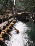 Mujer que realiza ceremonia de la purificación del agua imagenes de archivo