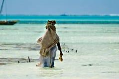Mujer que recoge algas marinas Foto de archivo libre de regalías