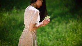 Mujer que recolecta las flores almacen de video