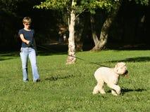 Mujer que recorre con su perro Imágenes de archivo libres de regalías