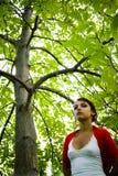 Mujer que recorre en bosque Imagenes de archivo