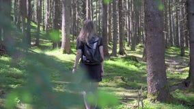 Mujer que recorre en bosque almacen de metraje de vídeo
