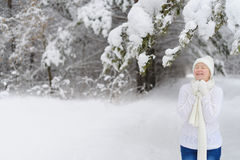 Mujer que recorre en parque del invierno Foto de archivo