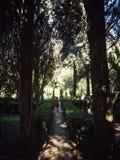Mujer que recorre en un parque fotografía de archivo libre de regalías