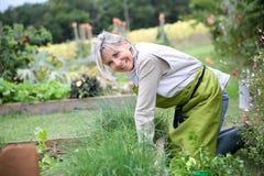 Mujer que se arrodilla para trabajar en jardín Fotografía de archivo libre de regalías