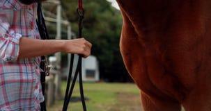 Mujer que se coloca con su caballo metrajes