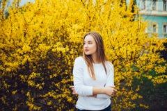 Mujer que se coloca delante de árbol floreciente amarillo en calle de la ciudad en día de primavera Fotos de archivo
