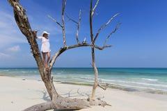 Mujer que se coloca en un árbol que mira hacia fuera al océano Imagenes de archivo