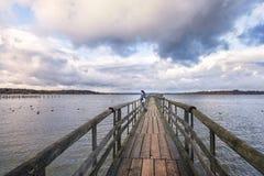 Mujer que se coloca en un puente Fotografía de archivo