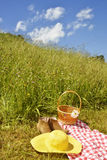 Mujer que se relaja en un prado verde Imagen de archivo libre de regalías