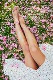 Mujer que se sienta en la hierba cubierta con los p?talos y las flores rosados del cerezo fotografía de archivo libre de regalías