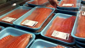 Mujer que selecciona el prendedero del salmón atlántico dentro de la tienda de Costco almacen de video