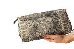 Mujer que sostiene el bolso de cuero de la serpiente Imagenes de archivo