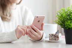 Mujer que sostiene el iPhone 6 S Rose Gold en café Fotos de archivo