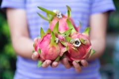 Mujer que sostiene la fruta del dragón disponible imagen de archivo libre de regalías