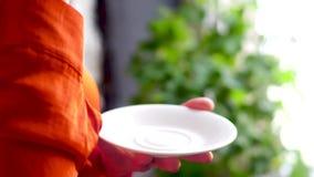 Mujer que sostiene la taza de té con la placa en sus manos almacen de video