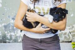 Mujer que sostiene un perro Fotos de archivo libres de regalías