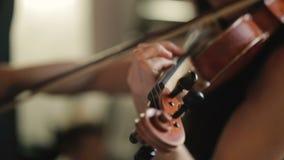 Mujer que toca el violín Cierre para arriba almacen de video